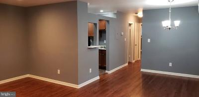 Takoma Park MD Condo For Sale: $310,000