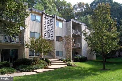 Montgomery County Condo For Sale: 12405 Braxfield Court #14