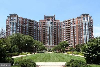 Rockville Condo For Sale: 5809 Nicholson Lane #201