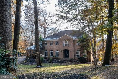 Potomac Single Family Home For Sale: 13712 Canal Vista Court