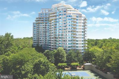 Chevy Chase Rental For Rent: 5600 Wisconsin Avenue #1-803