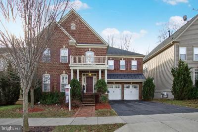 Clarksburg Single Family Home For Sale: 23018 Turtle Rock Terrace