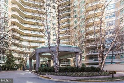 Chevy Chase Rental For Rent: 5610 Wisconsin Avenue #1203