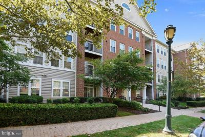 Rockville Condo For Sale: 502 King Farm Boulevard #203