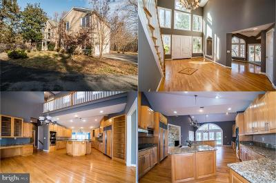 Potomac Single Family Home For Sale: 11261 S Glen Road