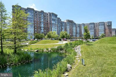 Silver Spring Condo For Sale: 3100 N Leisure World Boulevard #1026