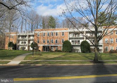 Chevy Chase Rental For Rent: 3535 Chevy Chase Lake Drive #307