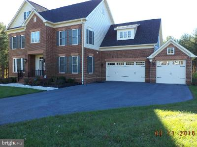 Darnestown Single Family Home For Sale: 12816 Pilots Landing Way