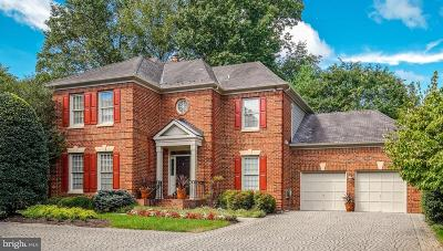 Potomac Single Family Home For Sale: 7906 Sandalfoot Drive