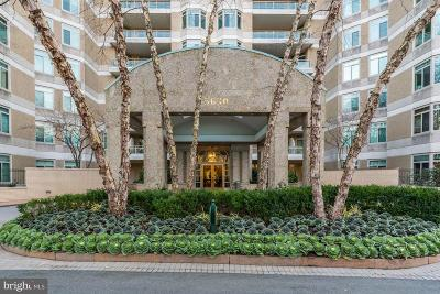 Chevy Chase Condo For Sale: 5630 Wisconsin Avenue #1403