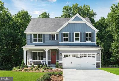 Burtonsville Single Family Home For Sale: 4345 Arbor Wood Court
