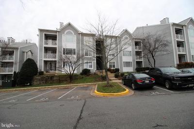 Germantown Single Family Home For Sale: 20406 Shore Harbour Drive #4-D