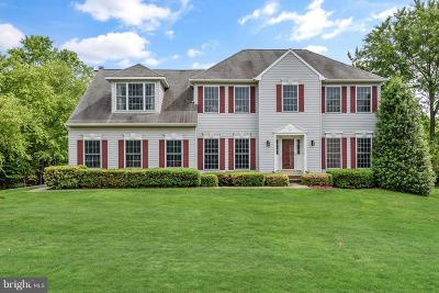 Gaithersburg Single Family Home For Sale: 6404 Damascus Road