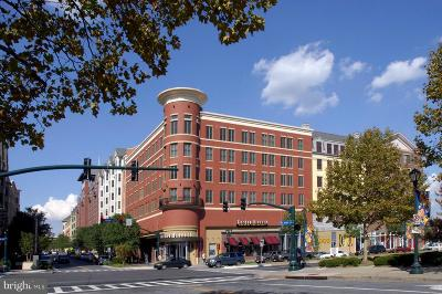 Rockville Condo For Sale: 38 Maryland Avenue #308