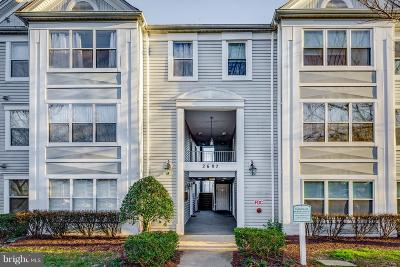Silver Spring Condo Active Under Contract: 2607 Camelback Lane #11-12