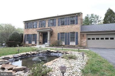 Potomac Single Family Home For Sale: 11300 Broad Green Drive