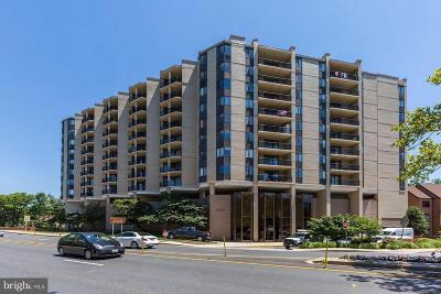 Chevy Chase Condo For Sale: 4242 East West Highway #1005
