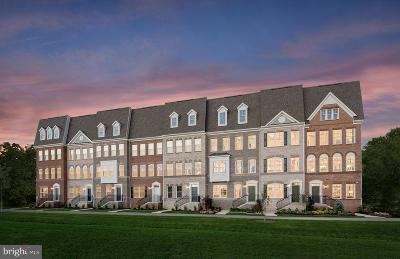 Montgomery County Townhouse For Sale: 20307 Century Blvd