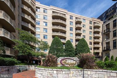 Bethesda Rental For Rent: 7111 Woodmont Avenue #602