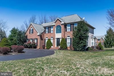 Gaithersburg Single Family Home For Sale: 7231 Cypress Hill Drive