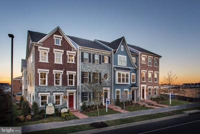 Montgomery County Townhouse For Sale: 13014 Ebenezer Chapel Drive