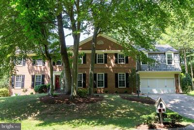 Potomac Single Family Home For Sale: 7708 River Falls Drive