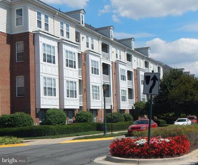 King Farm Condo For Sale: 105 King Farm Boulevard #F404
