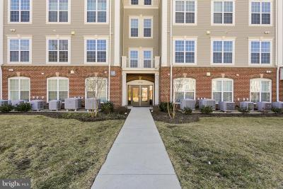 Silver Spring Condo For Sale: 3750 Clara Downey Avenue #13
