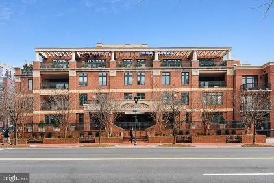 Bethesda Condo For Sale: 7405 Arlington Road #102