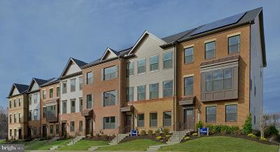 Montgomery County Townhouse For Sale: 22650 Observation Drive