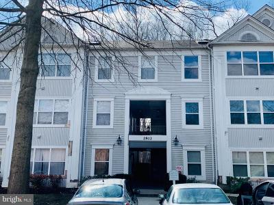 Silver Spring Condo For Sale: 2812 Clear Shot Drive #3-33