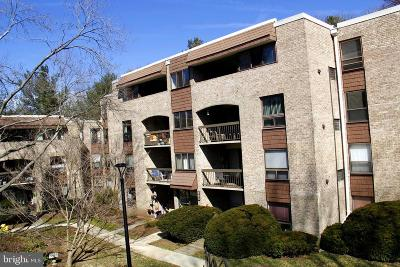 Gaithersburg Single Family Home For Sale: 405 Christopher Avenue #36 APT 2