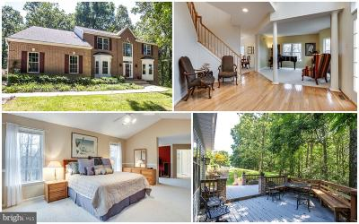 Gaithersburg Single Family Home For Sale: 26201 Long Corner Road