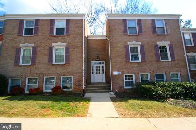 Gaithersburg Condo For Sale: 864 Quince Orchard Boulevard #OP1