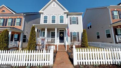 Clarksburg Single Family Home For Sale: 22396 Heron Neck Terrace