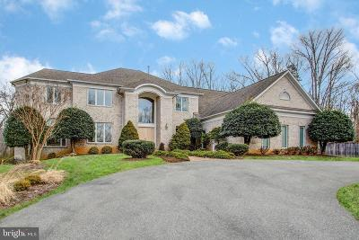 Potomac Single Family Home For Sale: 11331 Palatine Drive