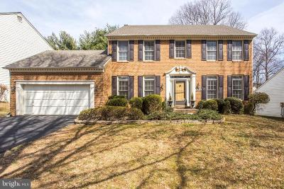 Gaithersburg Single Family Home For Sale: 12306 Turley Drive