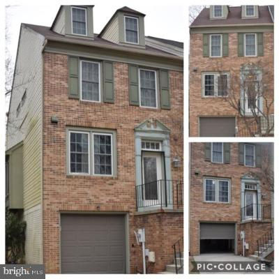 Burtonsville Townhouse For Sale: 3816 Water Drop Court