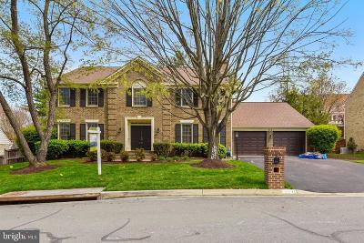 Potomac Single Family Home For Sale: 9521 Lost Trail Way