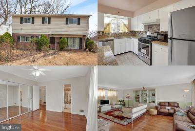 Silver Spring Single Family Home For Sale: 3816 Kayson Street