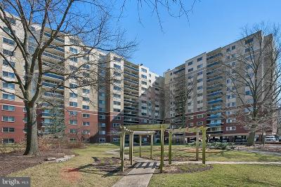 Takoma Park Condo For Sale: 7333 New Hampshire Avenue #103