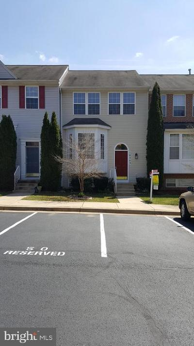 Germantown Townhouse For Sale: 18303 Bailiwick Place