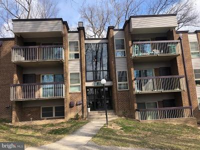 Silver Spring Condo For Sale: 2209 Greenery Lane #201-7