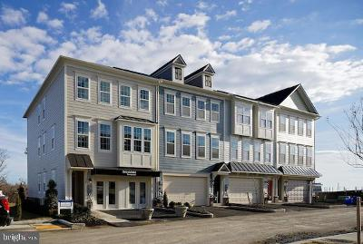 Silver Spring Townhouse For Sale: Clara Downey Avenue