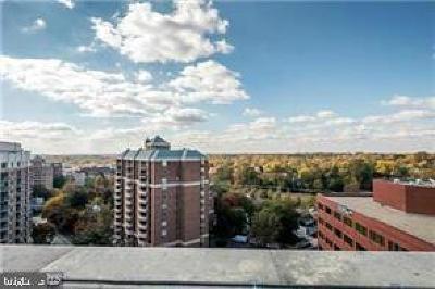 Bethesda Rental For Rent: 7710 Woodmont Avenue #401