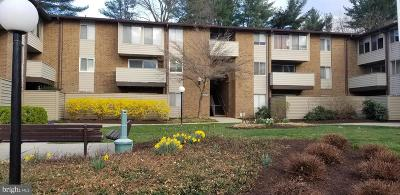 Montgomery County Condo For Sale: 19429 Brassie Place #201