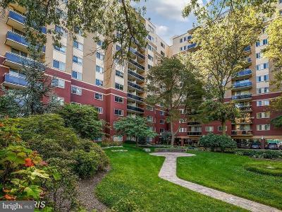 Takoma Park Condo For Sale: 7333 New Hampshire Avenue #715