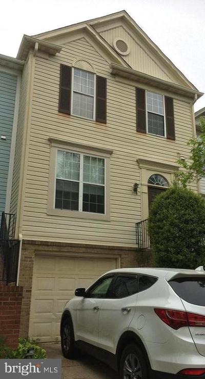 Montgomery County Townhouse For Sale: 2347 Massanutten Drive