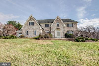 Clarksburg Single Family Home For Sale: 24401 Stringtown Road