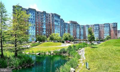 Silver Spring Condo For Sale: 3100 N Leisure World Boulevard #604